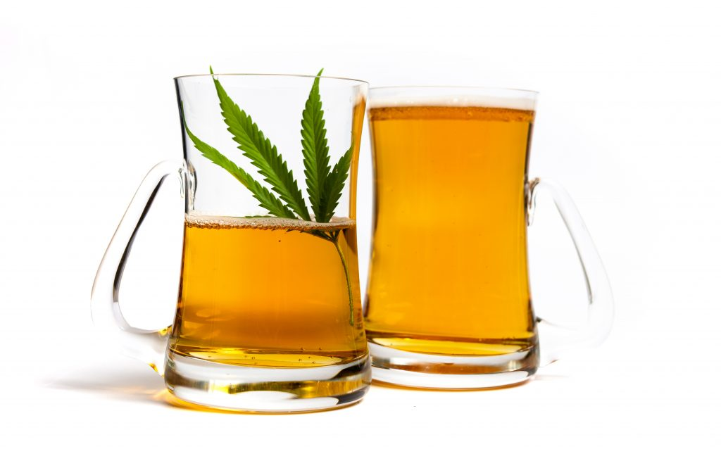 beer made from hemp